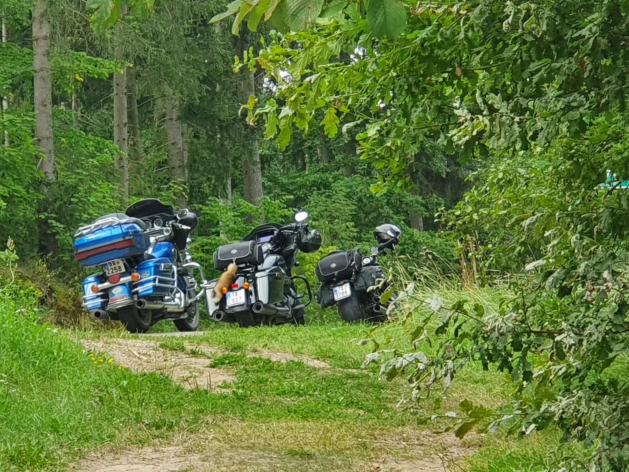 Motovýlety připravily afinancovali cestu naWHEELS AND GRILL Pskov